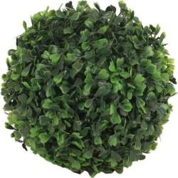 Buxus kušpán 13 cm