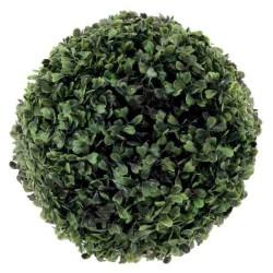 Buxus krušpán 30 cm
